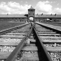 The scale and horror of the Holocaust will haunt us to the end of time